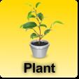 Homy - Plants